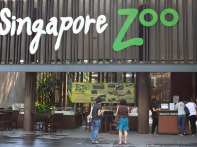 Singapore Zoo & Night Safari