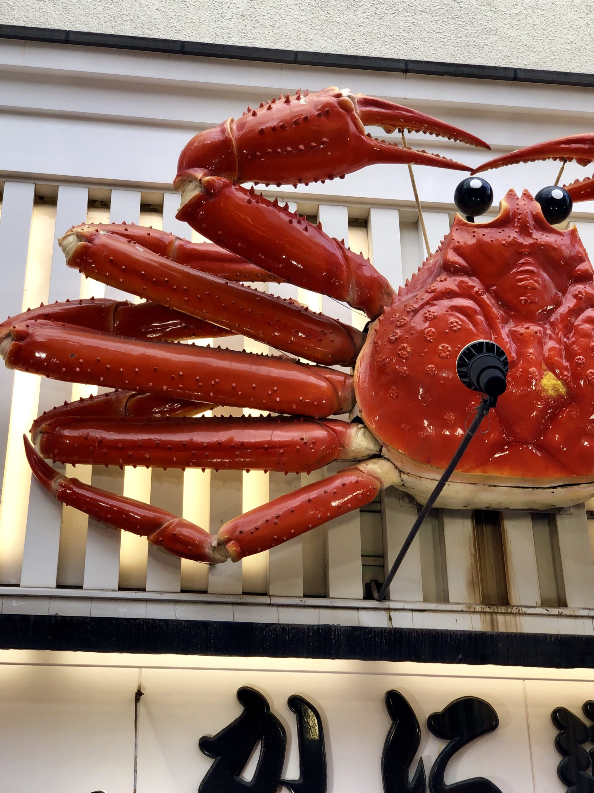 Giant moving crab in Dotonbori