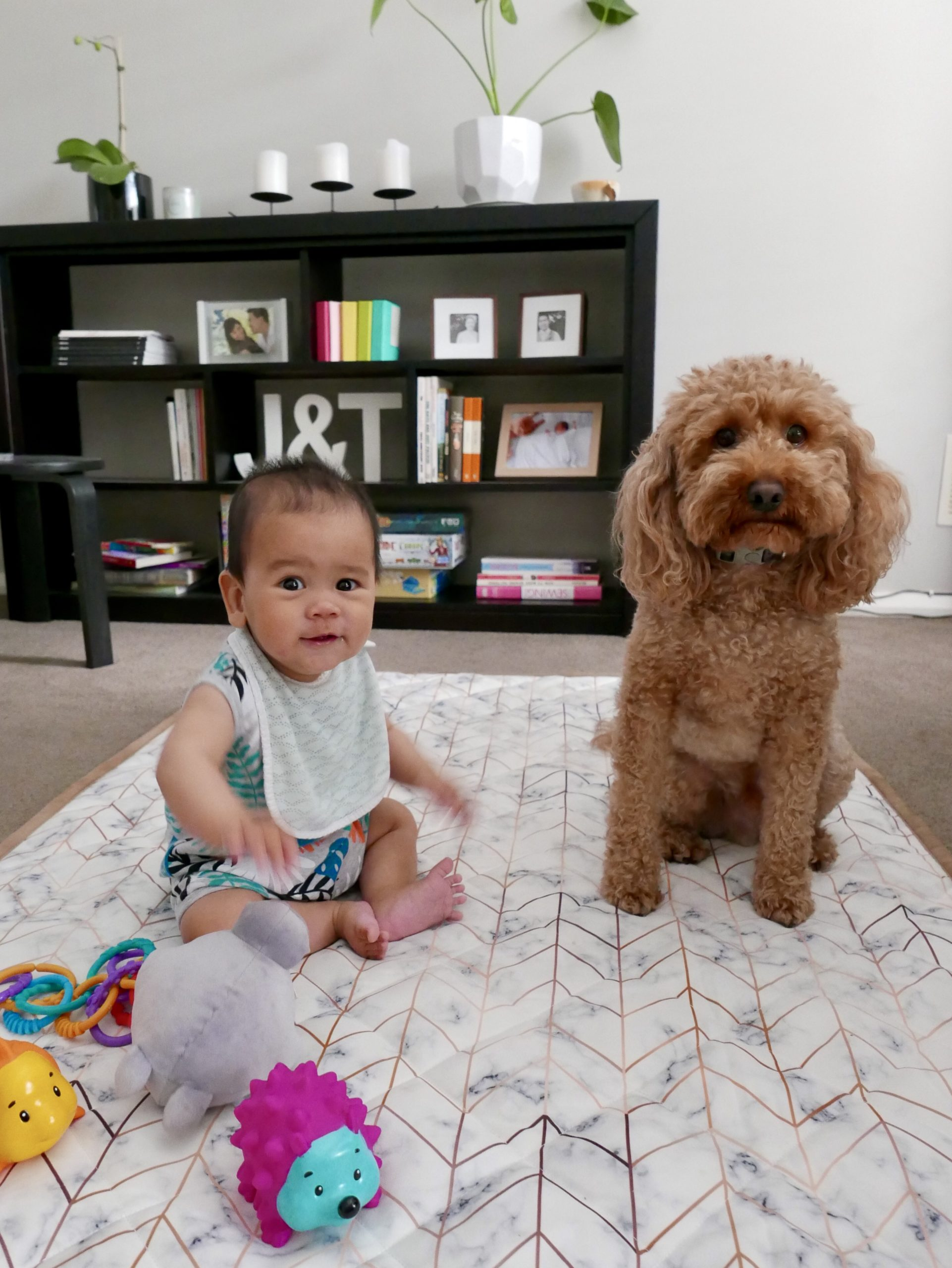 A baby and a dog sitting on a play mat