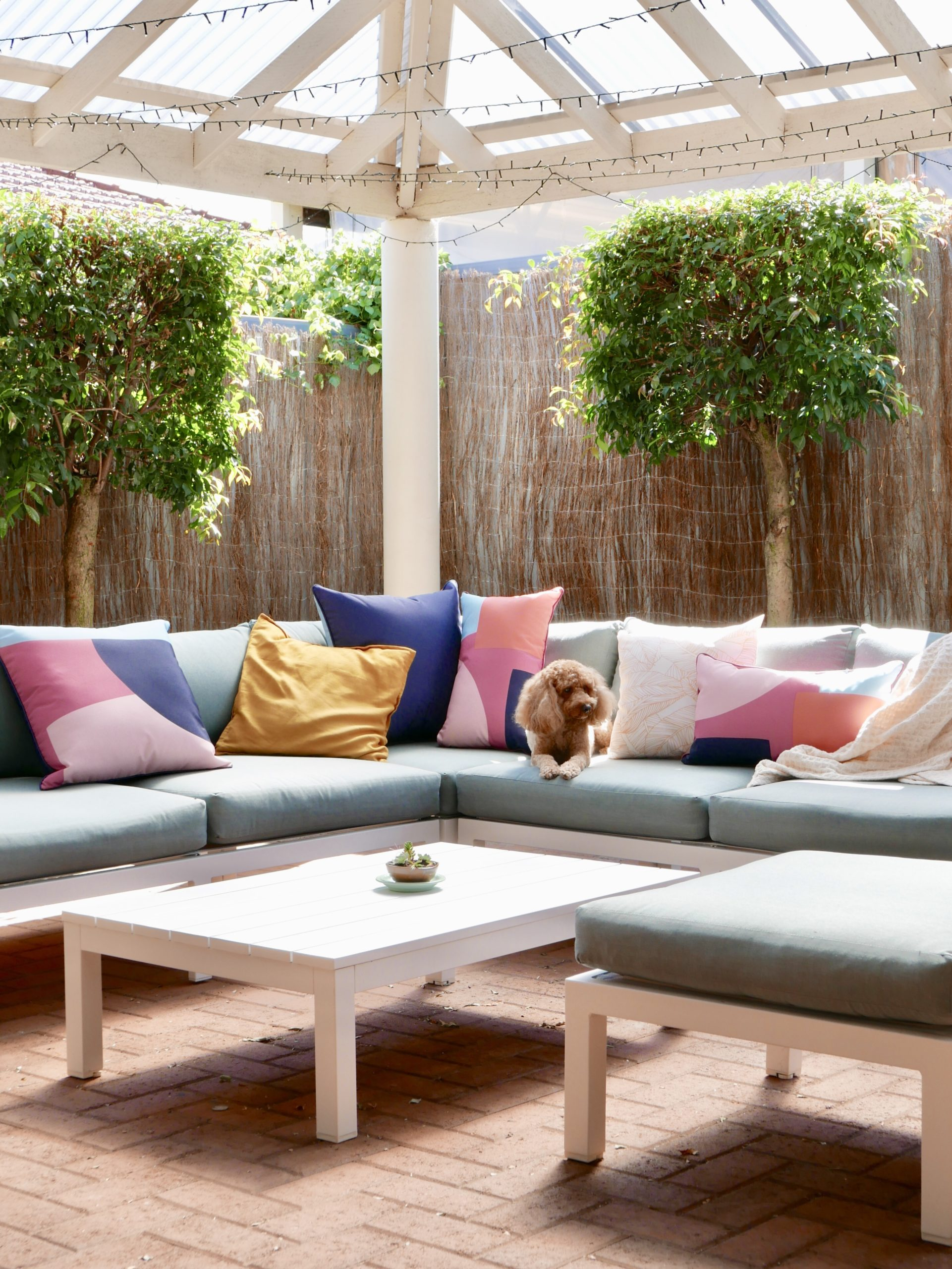 An outdoor setting in a courtyard. A dog is sitting on the couch.