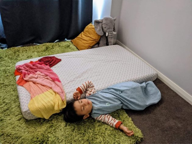 Felix lying on the floor, asleep, next to his cot mattress