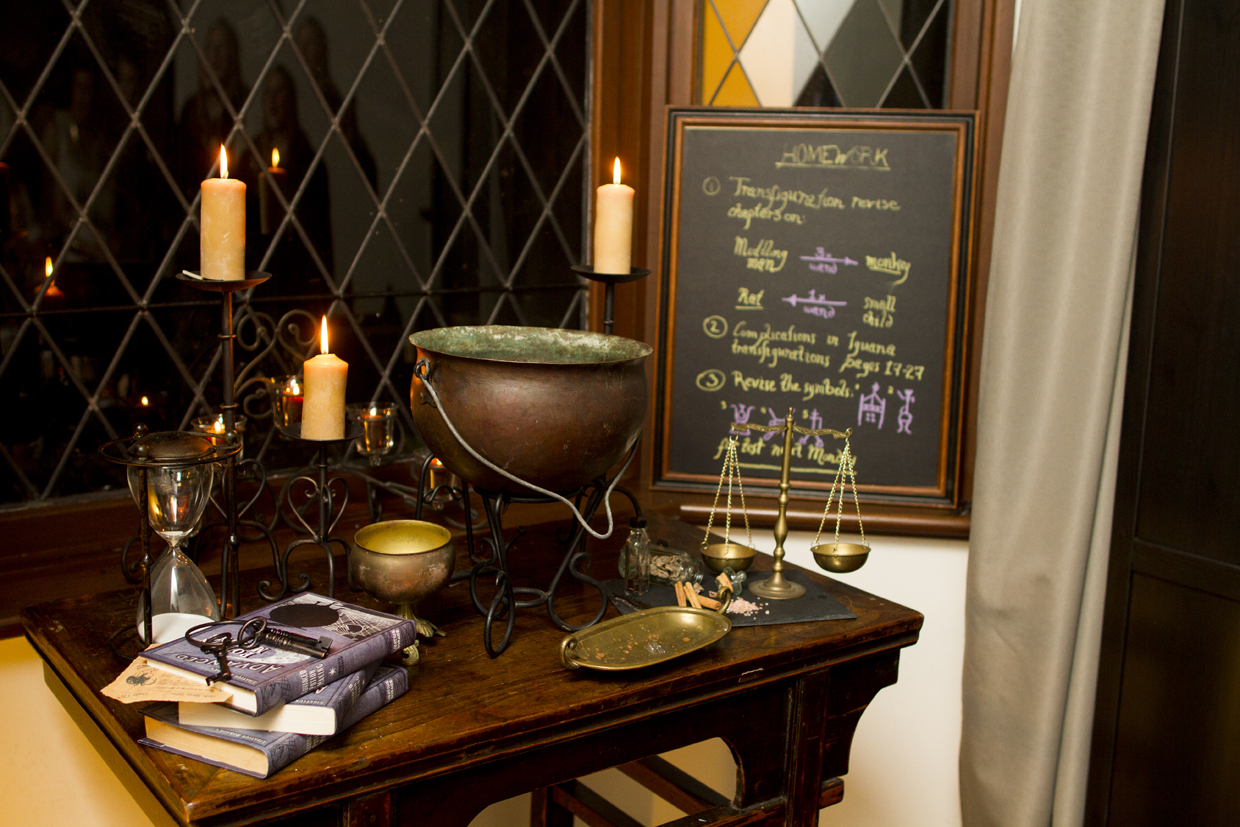 Harry Potter Party - 013